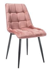 Ēdamistabas krēsls Signal Meble Chic Pink, 1 gab.