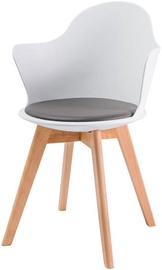 Ēdamistabas krēsls Signal Meble Matteo III White, 1 gab.