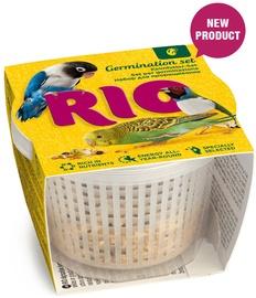Mealberry Rio Germination Set 25g
