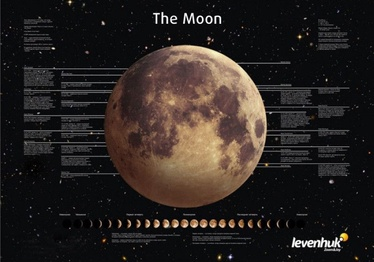 Различные Levenhuk Moon Poster