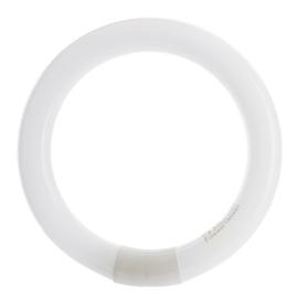 SPULDZE LUM. 22W 827 G10Q T9 CIRCLE (OSRAM)