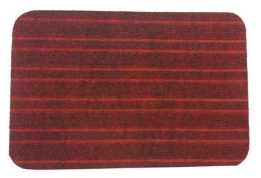 SN Roma 1 8000 38x57