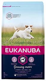 Eukanuba Puppy Small Breeds Chicken 3kg