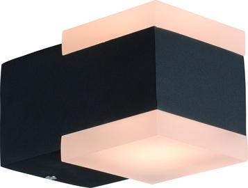Gaismeklis Domoletti Effection ELED-632-2, 8W, LED, IP54