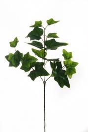 Mākslīgie ziedi Artificial flower Eucalyptus Twig 54cm 80-334084