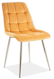 Ēdamistabas krēsls Signal Meble Chic Velvet, dzeltena/hroma