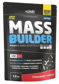 VPLAB Mass Builder 1.2kg Strawberry