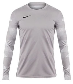Nike Dry Park IV Jersey Long Sleeve Junior CJ6072 052 Grey M