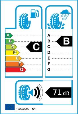 Зимняя шина Toyo Tires SnowProx S954, 215/55 Р17 98 V XL