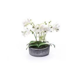 SN Artificial Orchid Flower Pot RU-578 36cm