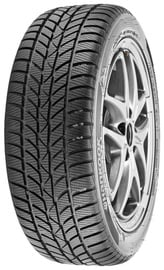 Зимняя шина Hankook Winter I Cept RS W442, 175/60 Р14 79 T