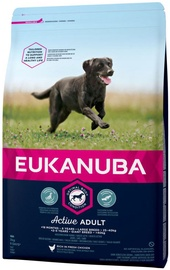 Eukanuba Adult Large Breed Chicken 3kg