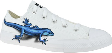Converse Chuck Taylor All Star Junior Low Top Lizards 667532C White 38