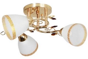 Verners Adina 15016B-3 Gold