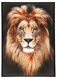 4Living Picture 50x70cm Lion