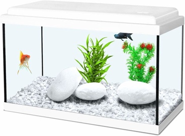 Zolux Aquarium Nanolife Kidz 40 White