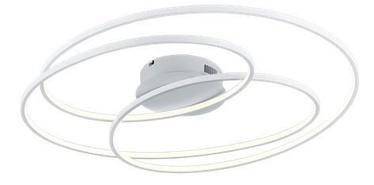 Trio Gale matēts balts 80cm diametra griestu LED gaismeklis, 50W, 5250lm, 3000k, trīspakāpju slēdža aptumšošanas funkcija