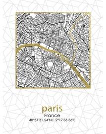 Fotoattēls Mondex Paris City Plan Painting 45x60x1.8cm