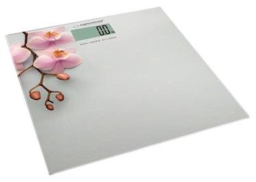 Весы для тела Esperanza Orchid EBS010
