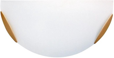Candellux Sara Plafond Lamp 1x60W Brass/Satin