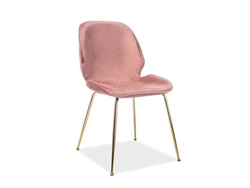 Signal Meble Adrien Velvet Chair Antique Pink/Gold