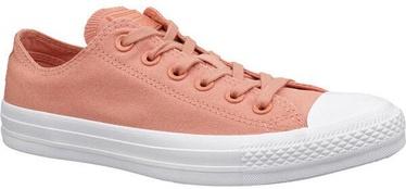 Sieviešu sporta apavi Converse Chuck Taylor, oranža, 36