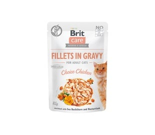 Konservi CATS BRIT CARE CHOICE VISTAI 85G