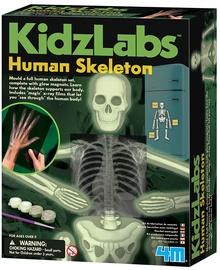 4M KidzLabs Glow Human Skeleton 3375