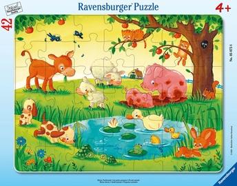 Puzle Ravensburger Frame Small Animals 050758, 42 gab.