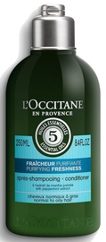 Кондиционер для волос L´Occitane Aromachologie Purifying Freshness Conditioner, 250 мл