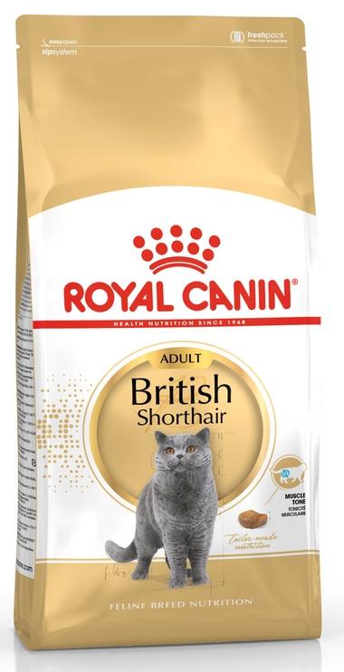 Kaķu barība Royal Canin British Shorthair 2kg