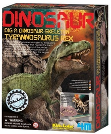 4M KidzLabs Tyrannosaurus Rex Skeleton 3221