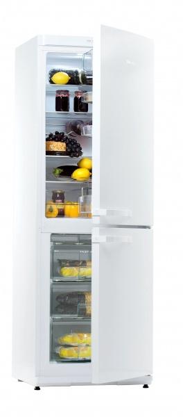 Холодильник Snaigė RF31SM-P100223