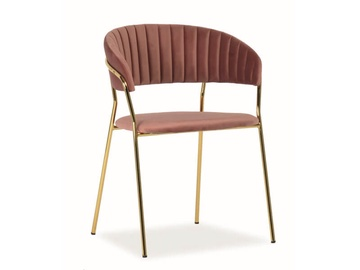 Ēdamistabas krēsls Signal Meble Lira Velvet Antique Pink/Gold, 1 gab.