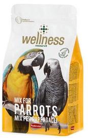 Сухой корм Padovan Wellness Parrots 750g