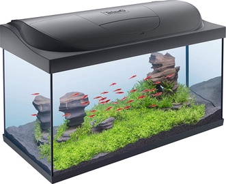Tetra Starter Line LED Aquarium 105l