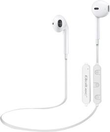 Беспроводные наушники Qoltec Wireless Earphones White