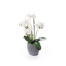 SN Artificial Orchid Flower Pot RU-5778 52cm