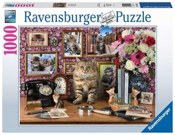 Puzle Ravensburger My Cute Kitty 15994, 1000 gab.