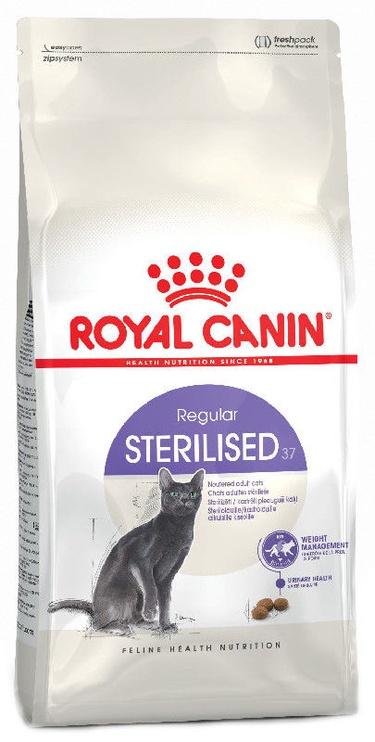 Royal Canin FHN Sterilised 10kg