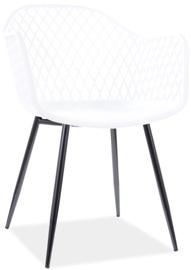 Ēdamistabas krēsls Signal Meble Corral B, balta