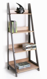 Step 4 Shelf 40814