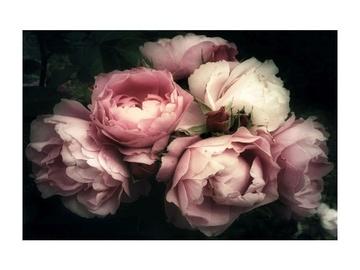 Fotoattēls Signal Meble Flowers I Glass Painting 120x80cm