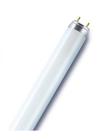 Radium Lumin Fluorescent Lamp T8 G13 865 58W