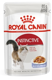 Royal Canin FHN Instinctive In Jelly 85g 12pcs