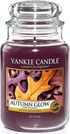 Свеча Yankee Candle Classic Large Jar Autumn Glow 623g