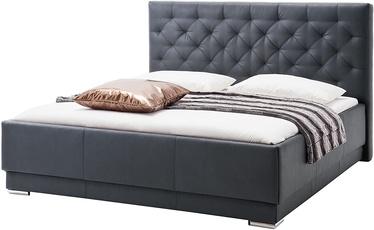 Кровать Meise Möbel Pisa, черный, 224x200 см