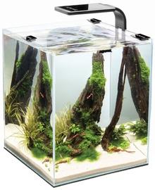 Aquael Aquarium Shrimp Set 10 Black