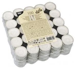 Pap Star Tea Light Candles