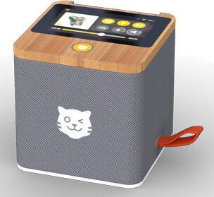 Bezvadu skaļrunis Tiger Media TigerBox TOUCH, pelēka